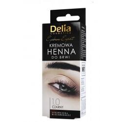 Delia Henna do Brwi Kremowa...